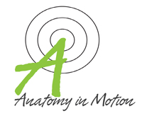 Anatomy in Motion